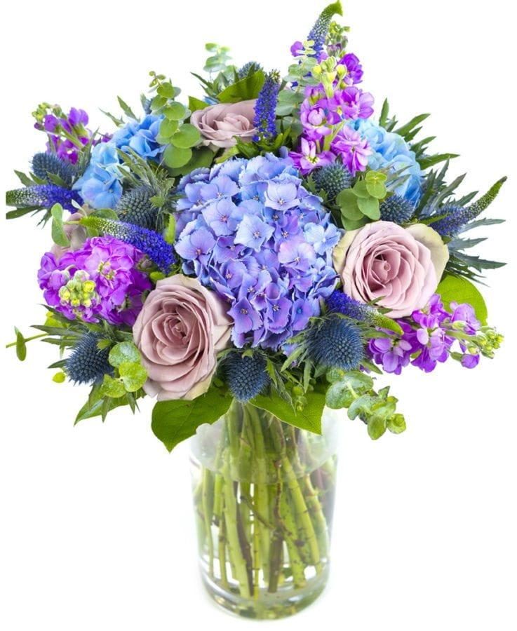 Get well soon - Purples, Blues & Lilacs